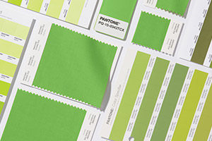 """Greenery"" Is The Pantone Colour of the Year And Heralds New Beginnings"